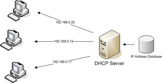 IntroDHCP1